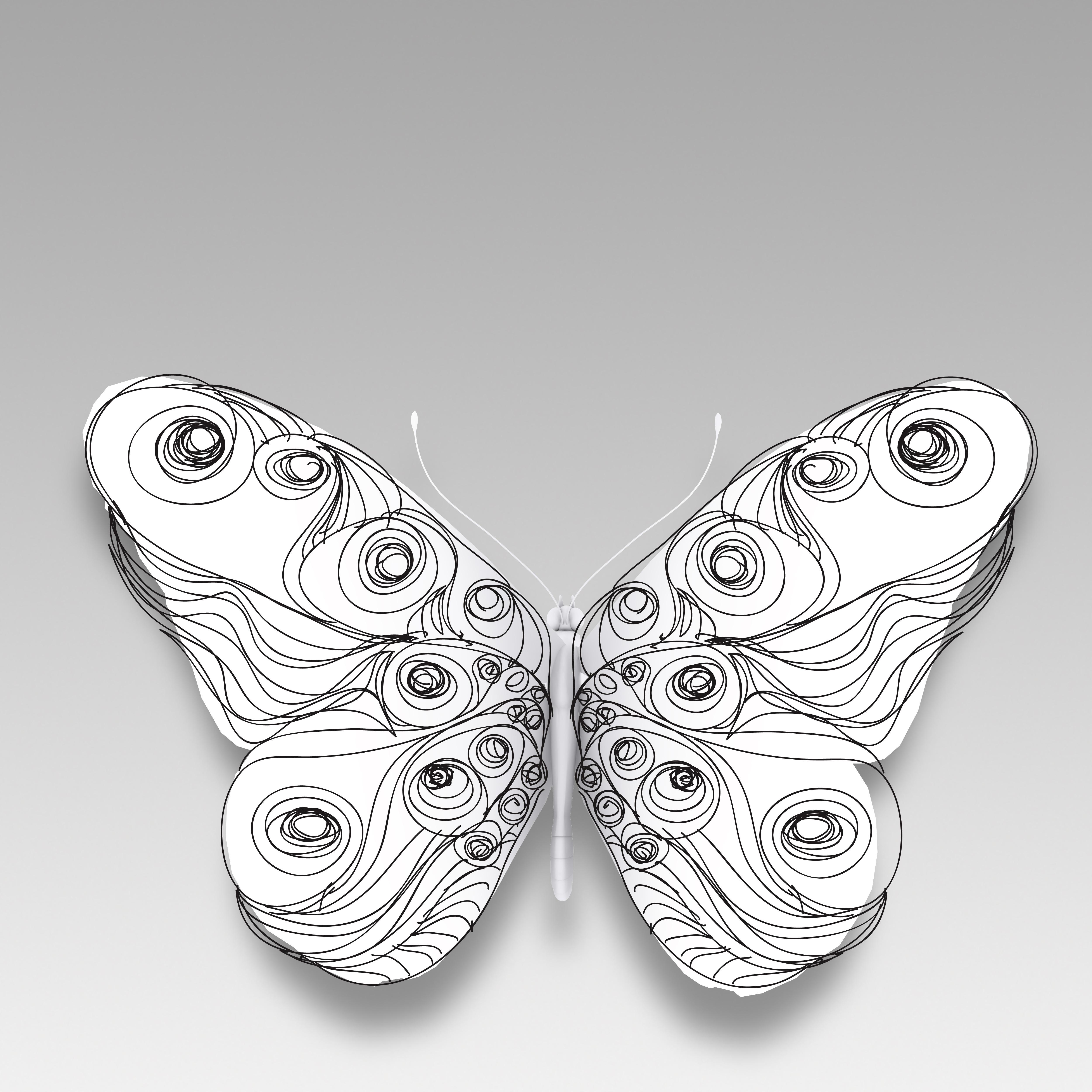 butterflyline2.jpg